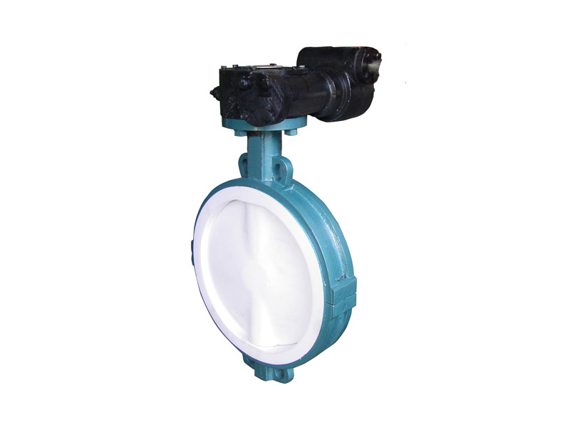 Centric Construction Butterfly Valve